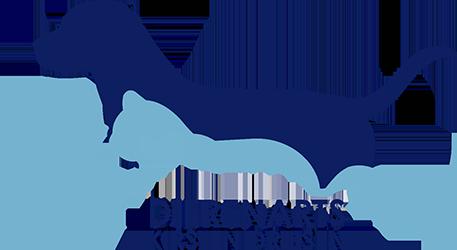 Dierenarts Kirsten Driesen